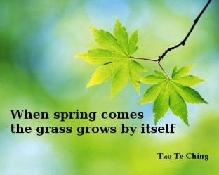 Grass grows by itself