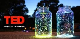 TED Talks Ideas