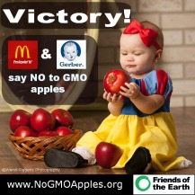 Say no to GMO